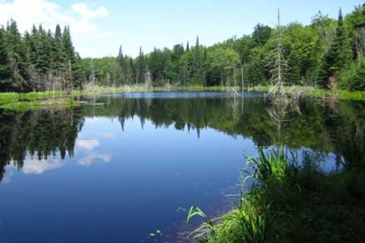 North Country Scenic Trail