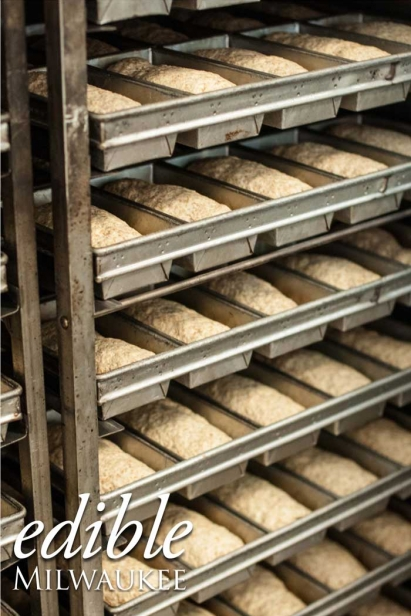 Rising bread at Angelic Bakehouse